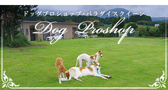 Dog Proshop PARADISE QUEEN